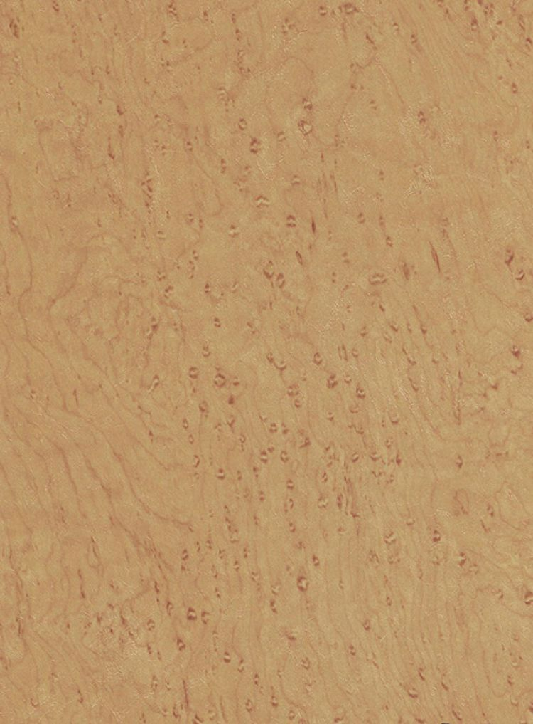 Bird's Eye Maple
